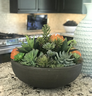 How to Spruce Up Your Home with Succulents