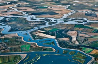 Water Bond... the Right Move to Keep CA Farmlands Thriving