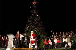 McCaffrey Homes' Christmas tree lighting raises more than $13,000 for local schools