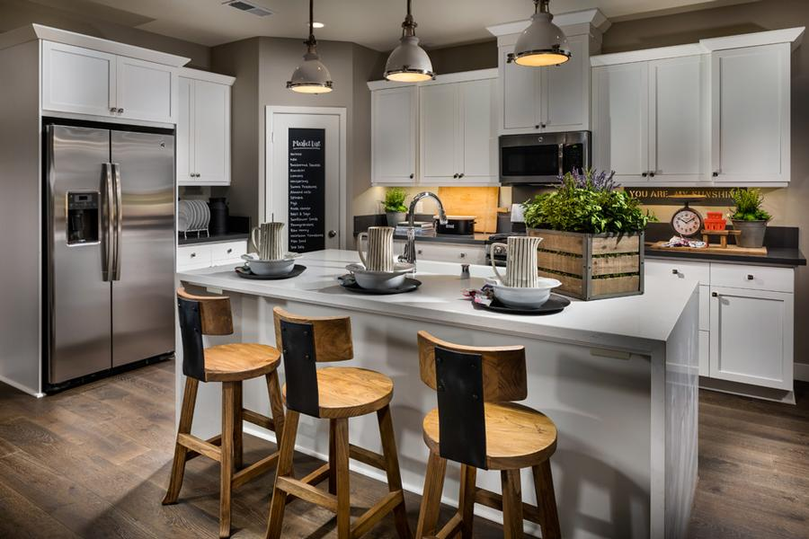 Santerra Residence One Kitchen